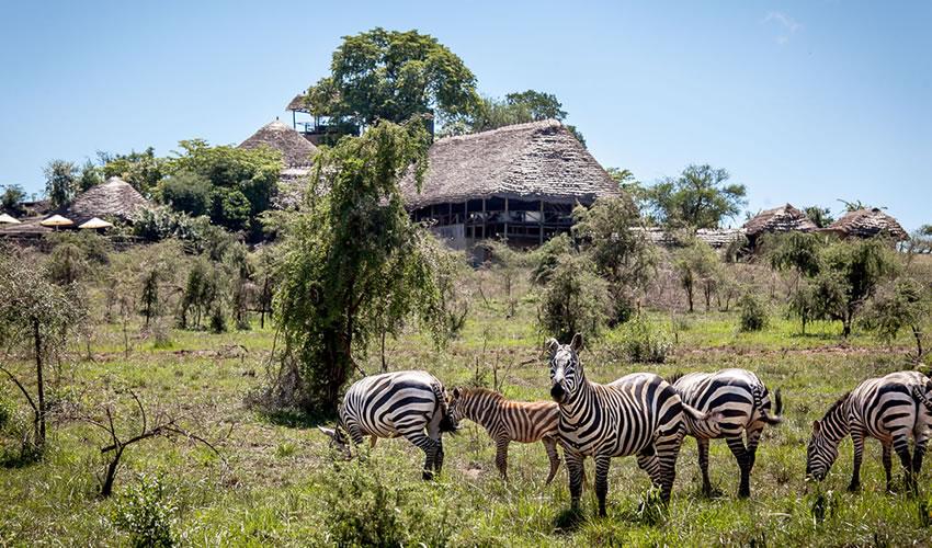 Apoka Lodge in Kidepo