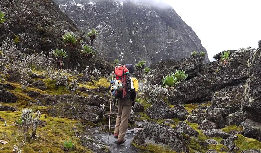6 Days Rwenzori Mountain Climbing Safari