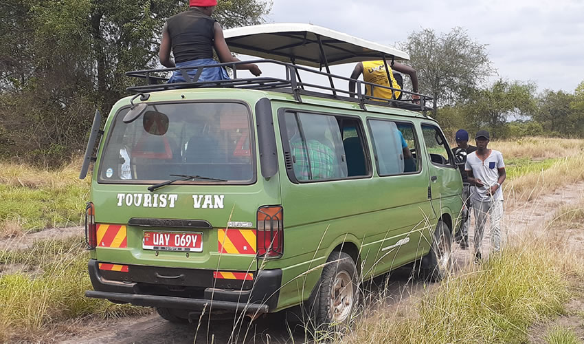 Game Drive In Murchison Falls National Park