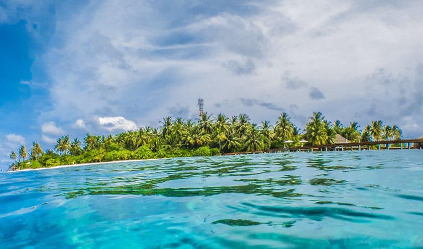 7 Days Zanzibar Island Safari