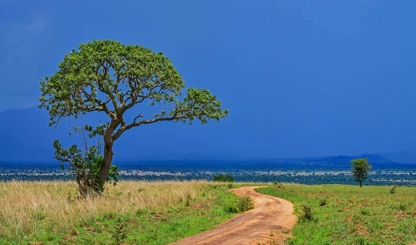 Exploring Uganda's Most Isolated National Park.