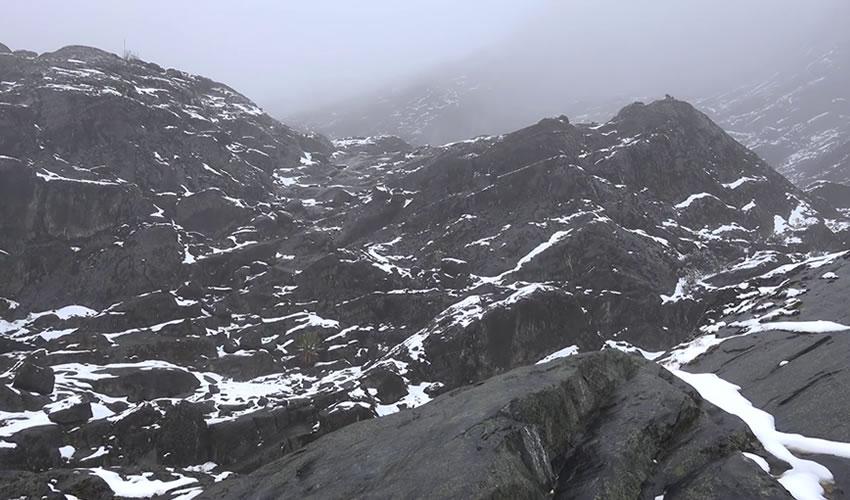Hiking Rwenzori Mountain
